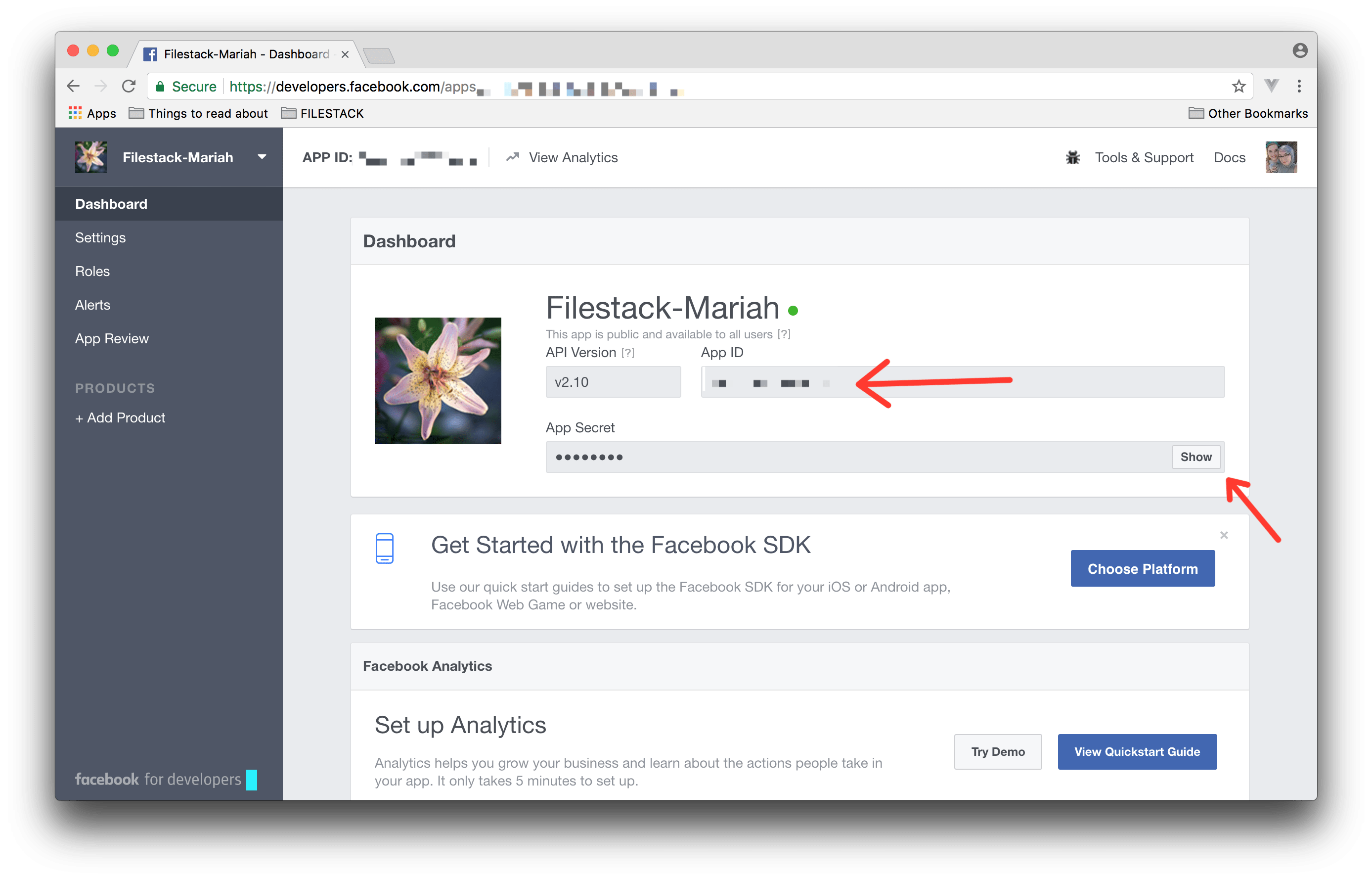 Screenshot showing Dashboard in Facebook for Developers
